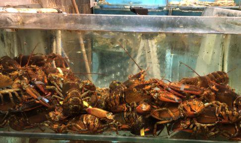 saigon seafood harbor restaurant